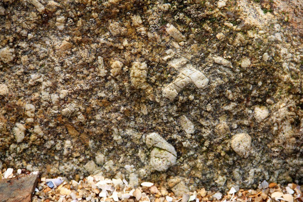 Souvent les cristaux de feldspath sont associés par deux pour former des macles...