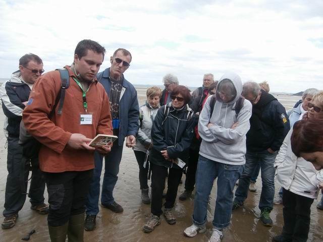Ici ce sont principalement les vers vivant dans le sable (Arénicoles,Lanices...) qui nous sont présentés.