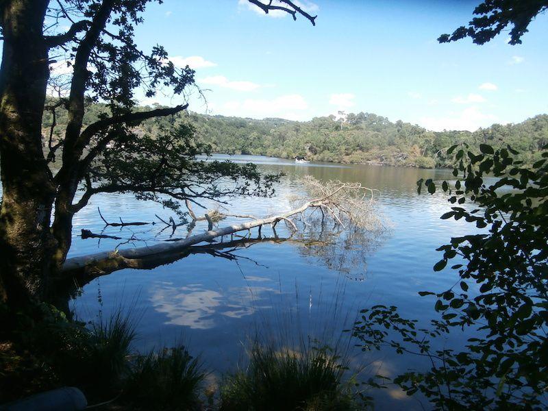 Nous revenons en longeant les bords du lac.