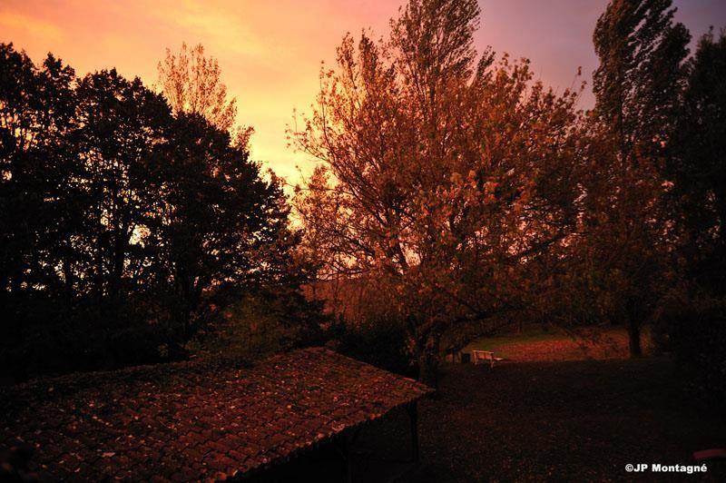 Poème: Frissons d'automne