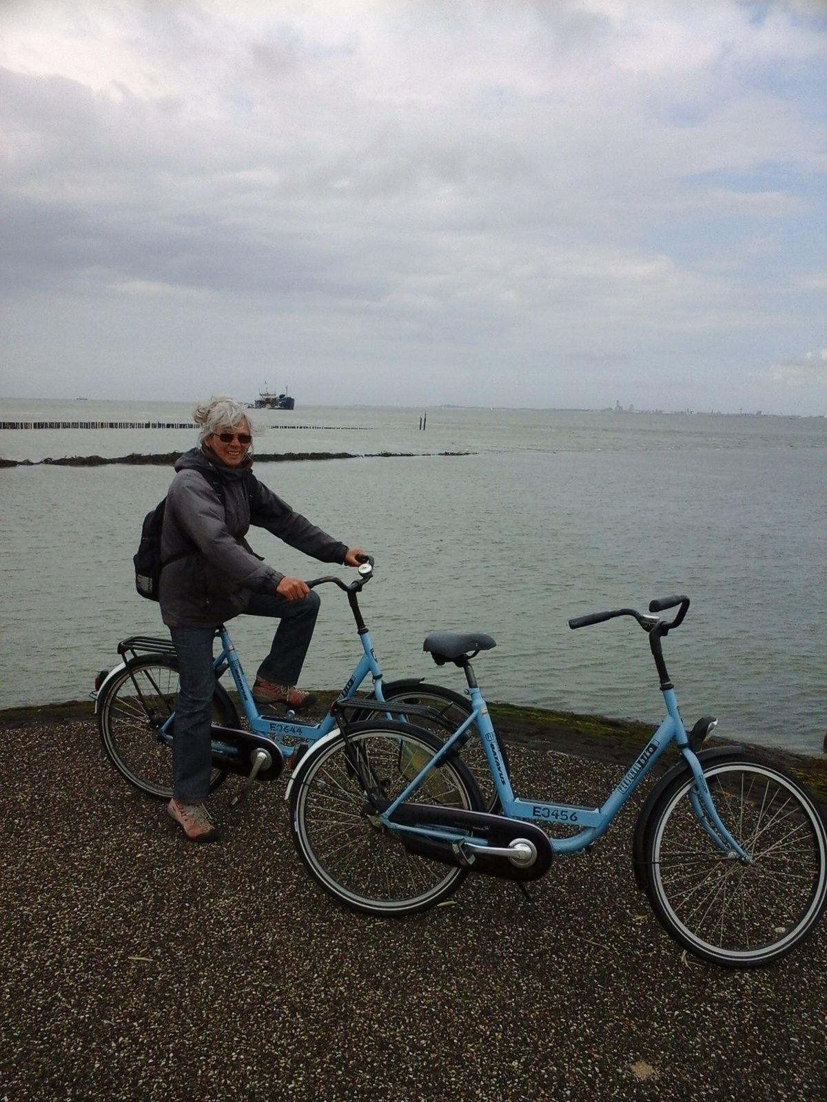 De Dunkerque, Breskens, nous sommes au Pays-Bas.  Philipe, nous y a pris nos amarres, Gwenn Ha  Du, n'aimant décidément pas les marinas, ce n'était pourtant que la deuxième, Philipe continue en solitaire vers la Méditerranée.  Impossible de ne pas faire un peu de bicyclette.Là aussi les gens savent s'amuser, la preuve en est, ce super yack miniature piloté de main de maître par le vendeur de homards du coin.