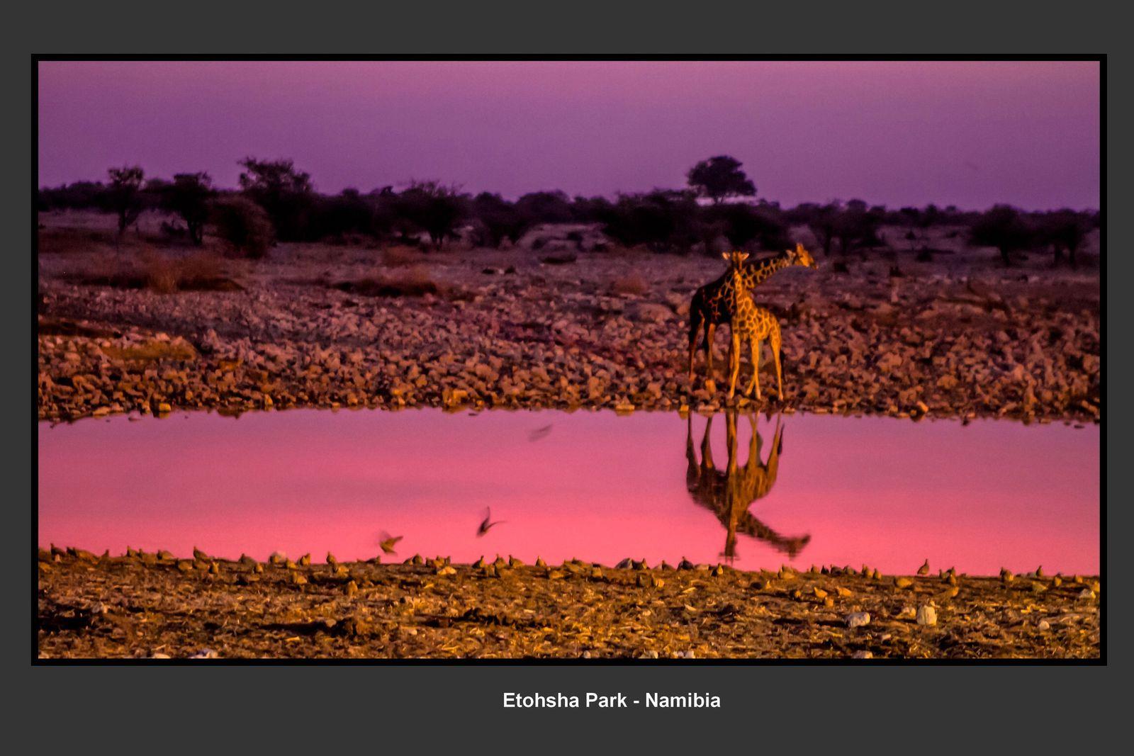 La Namibie , magique!!!