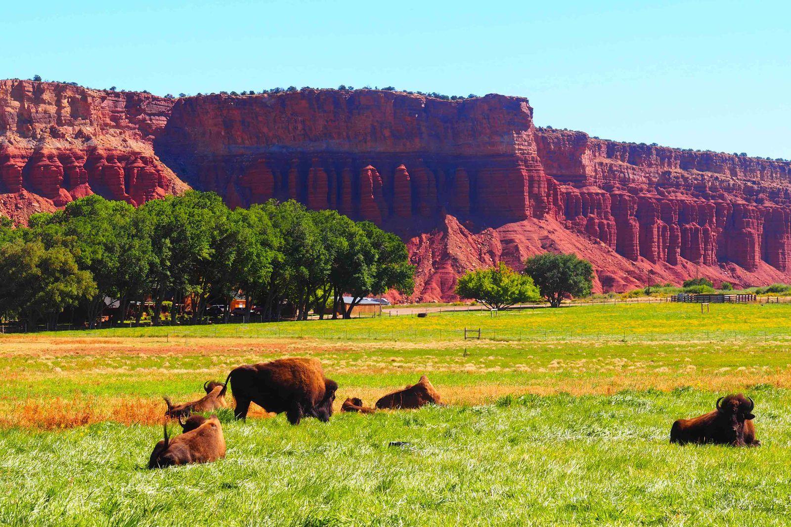 La côté Ouest des States: 3 eme volet: l'Utah