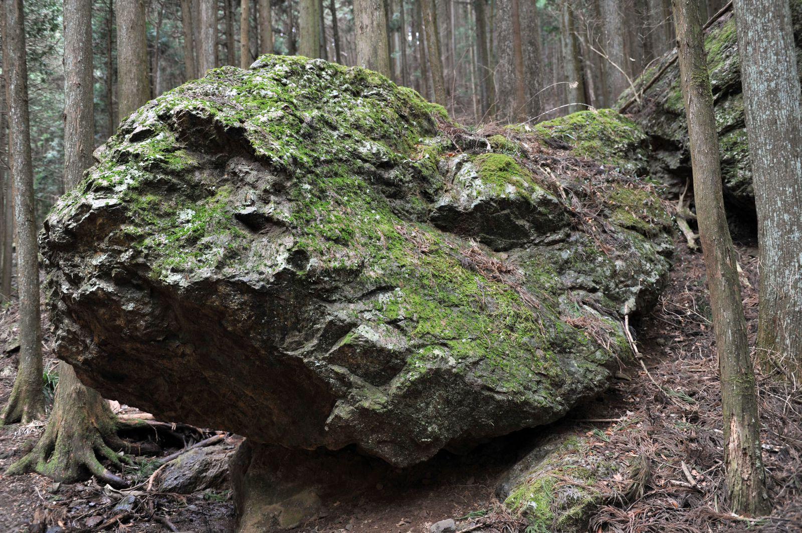 Mt.Izugatake 1