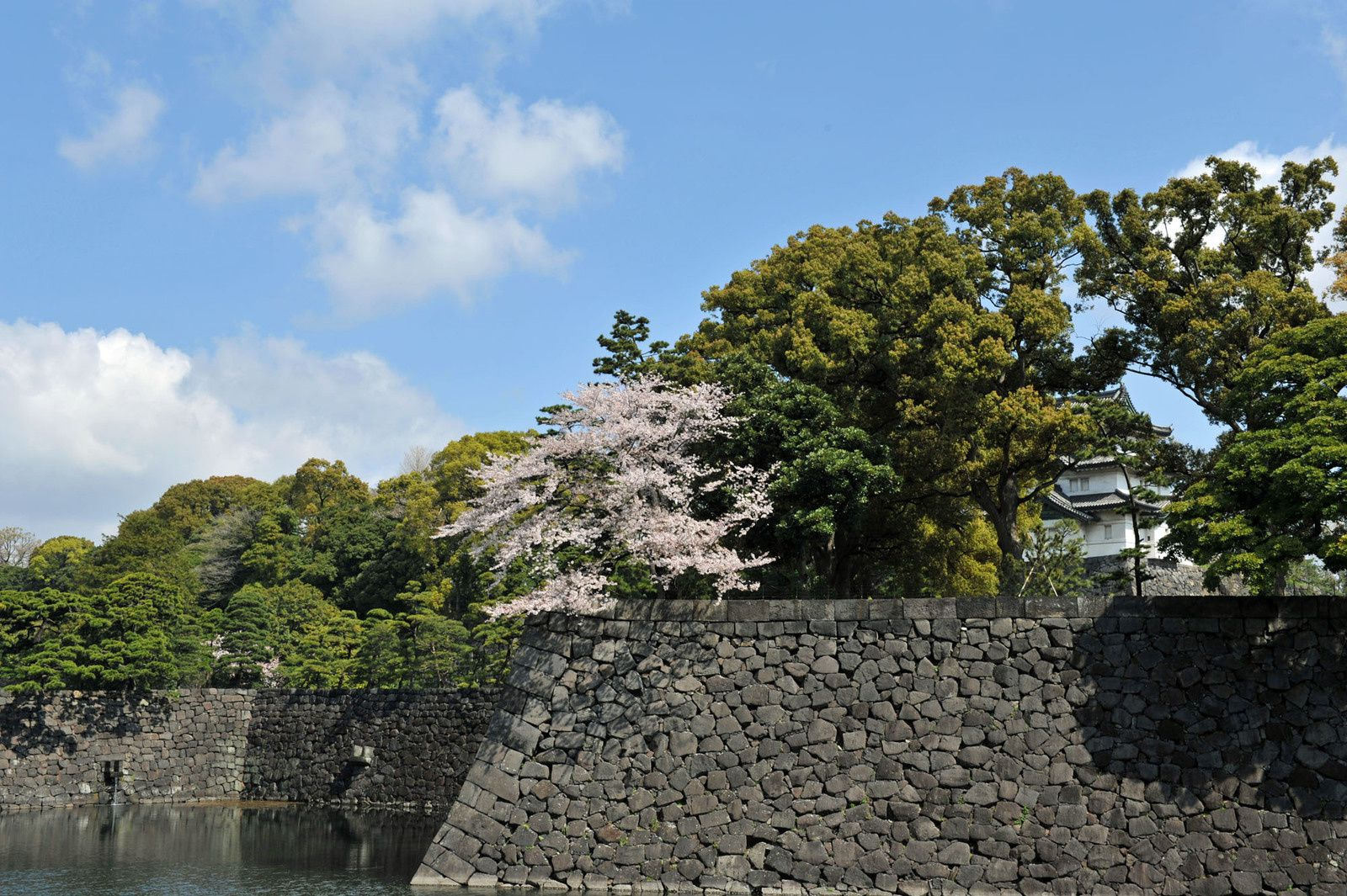 Stone wall of Edo-jo Castle