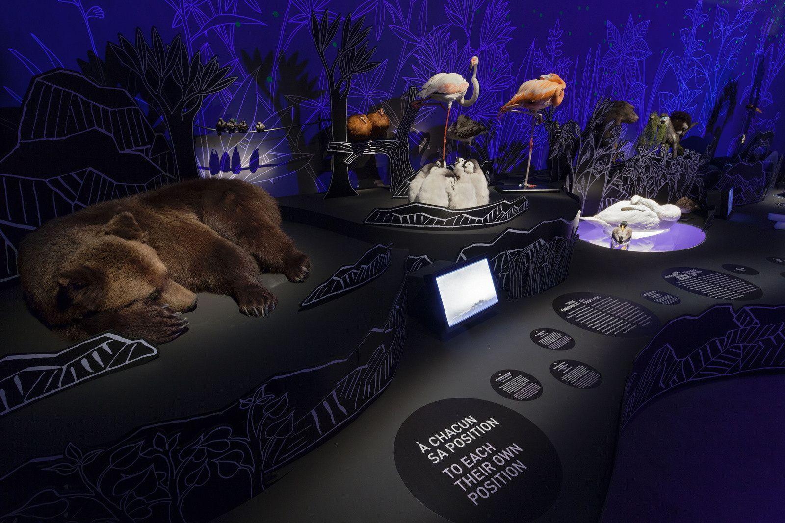 La Nuit au Muséum