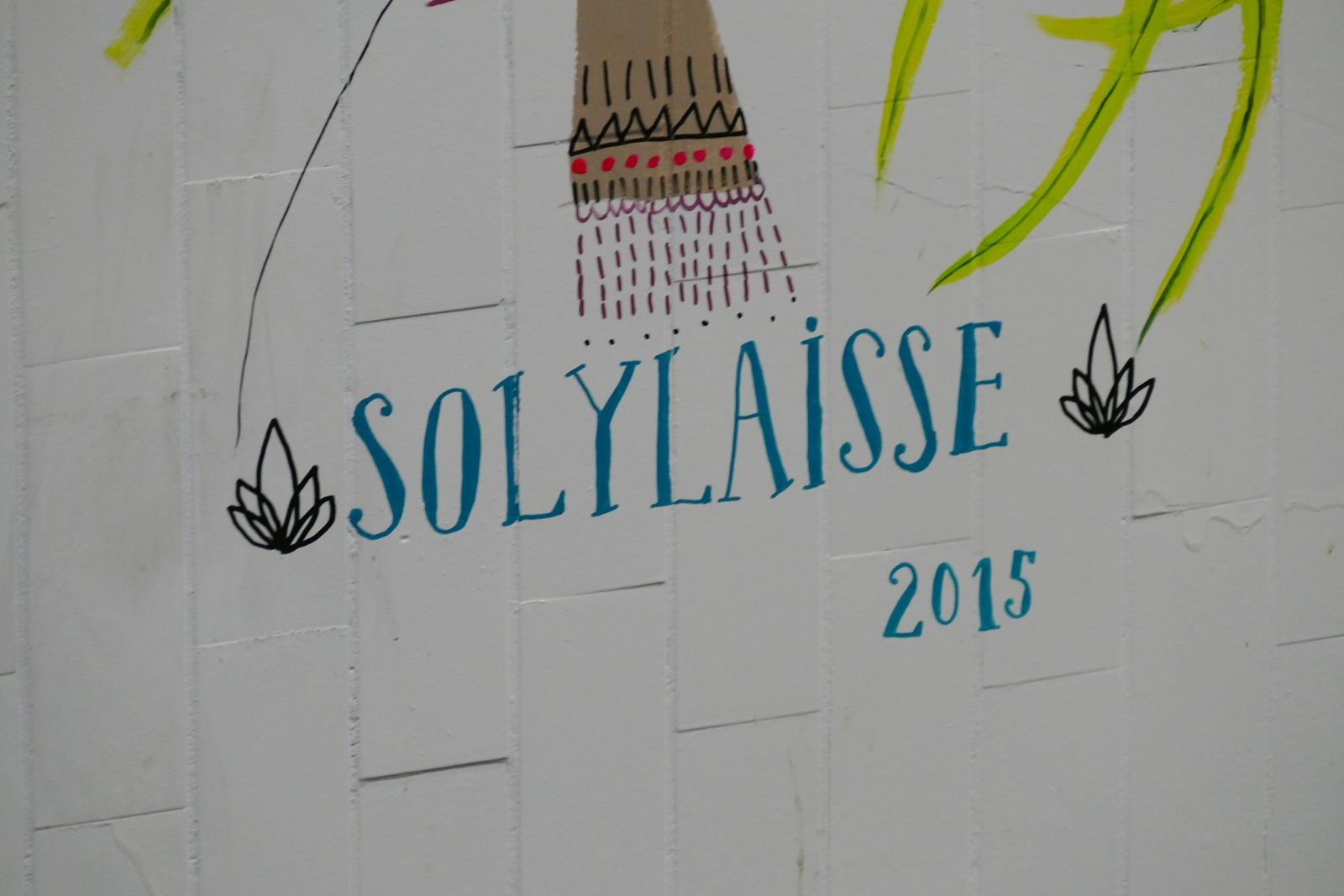 Oeuvre de Solulaisse - photos by Chry 8 juillet 2015