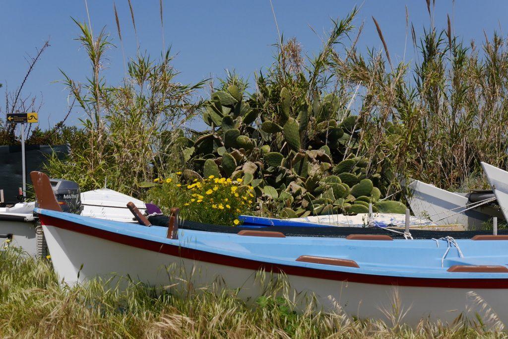 .. Les îles éoliennes , le Stromboli...