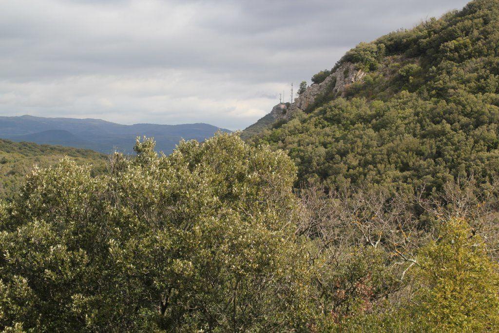 Pic du Tantajo a Bédarieux