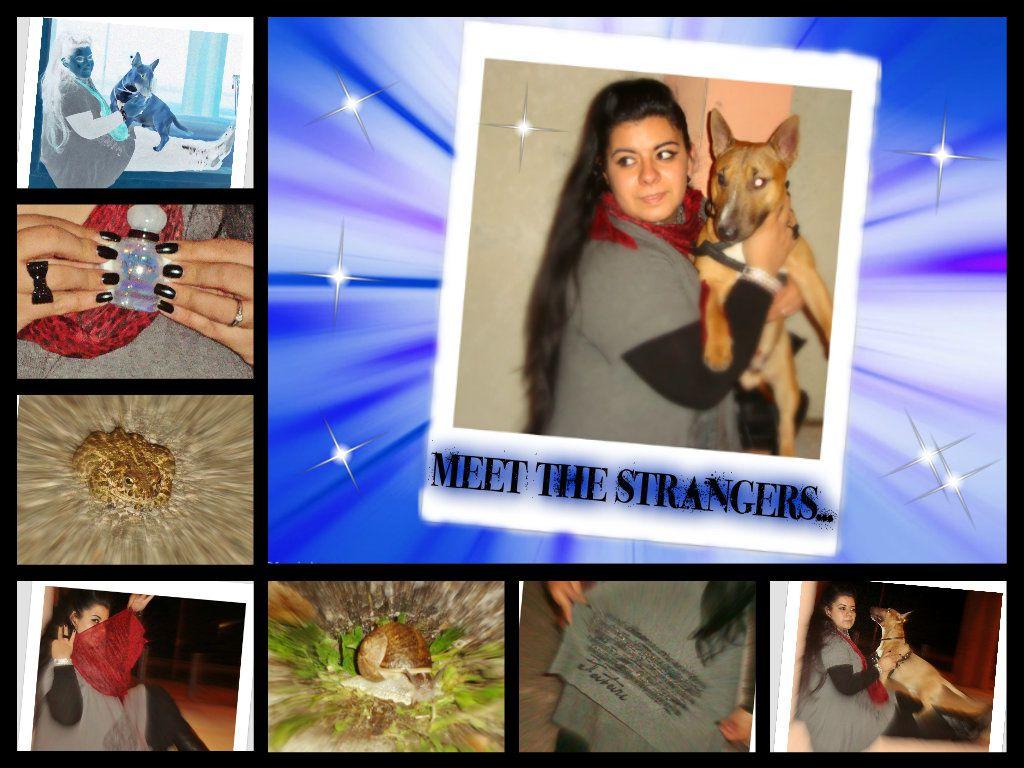MEET THE STRANGERS...