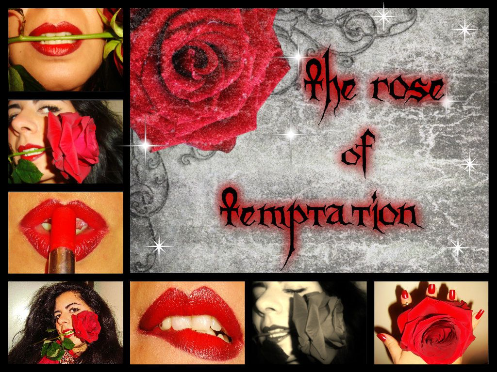 The Rose Of Temptation