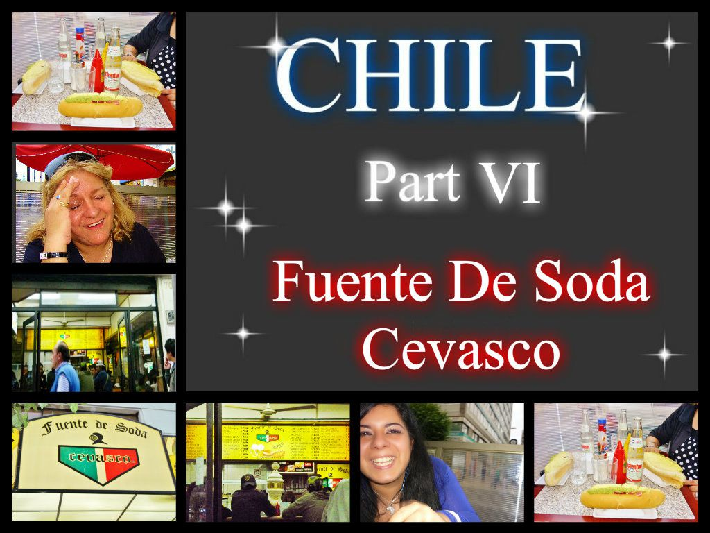 CHILE Part VI - Fuente De Soda El Cevasco- (15.12.08)