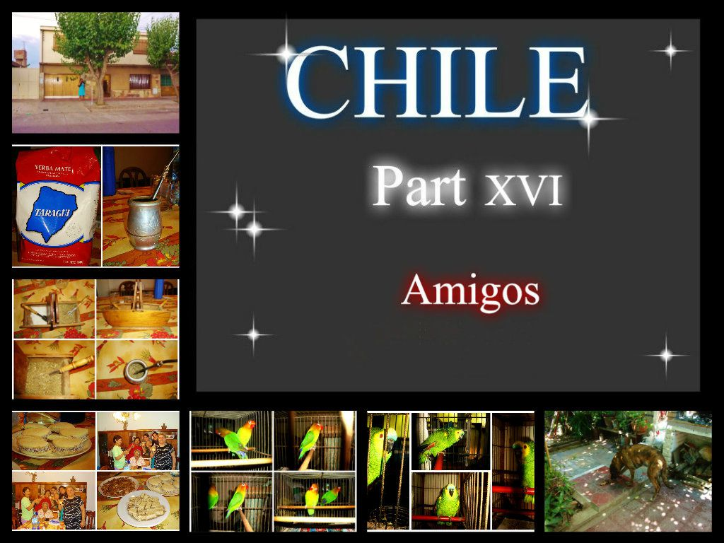 CHILE Part XVI - Amigos- (04.01.09)