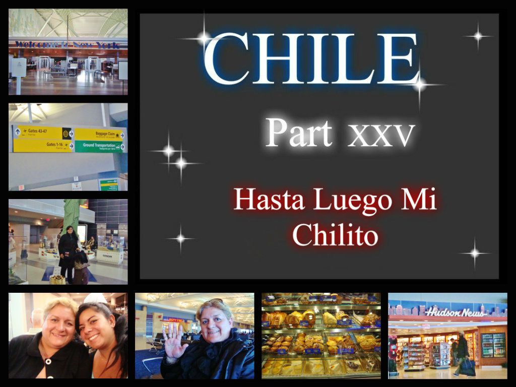 CHILE Part XXV-Hasta Luego Mi Chilito- (20.01.09)