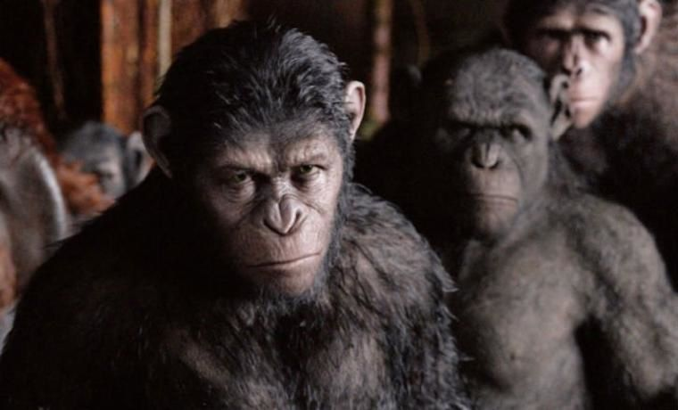 10- LA PLANETE DES SINGES: L'AFFRONTEMENT, M. Reeves