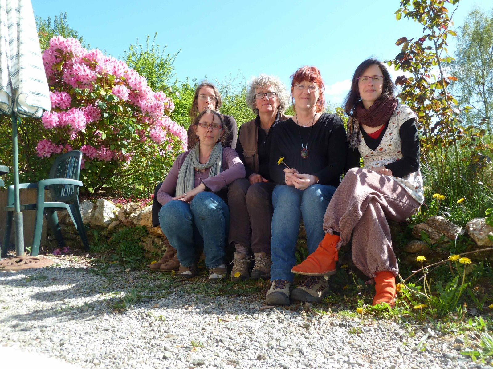 Semaine plantes sauvages comestibles