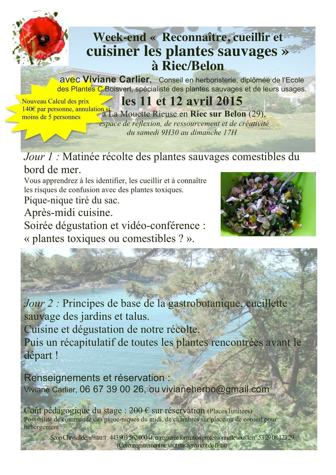 Week-end plantes comestibles à Riec sur Belon