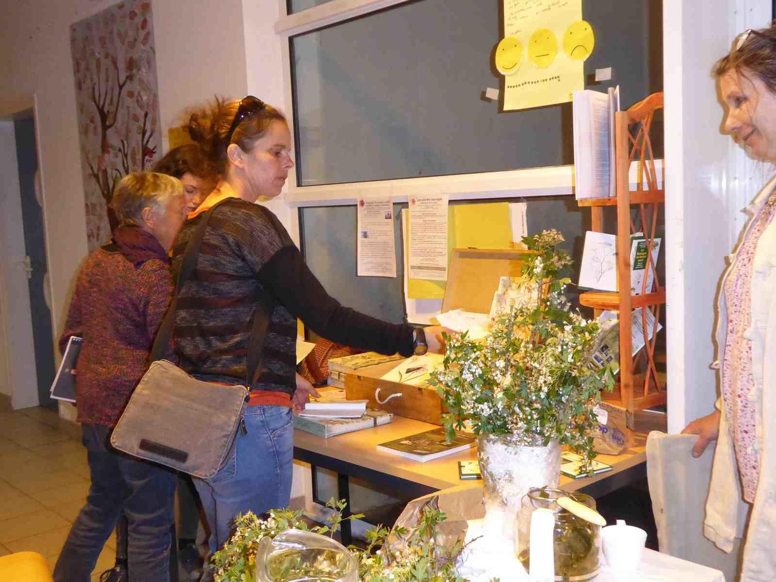 Conférence plantes médicinales sauvages pour la médiathèque de Carhaix en février ou la Maire de Riantec dans le cadre des journées de l'environnement