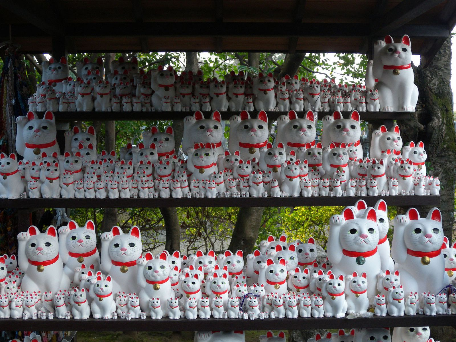 MANEKINEKO Lucky cat in Gotoku-ji Temple