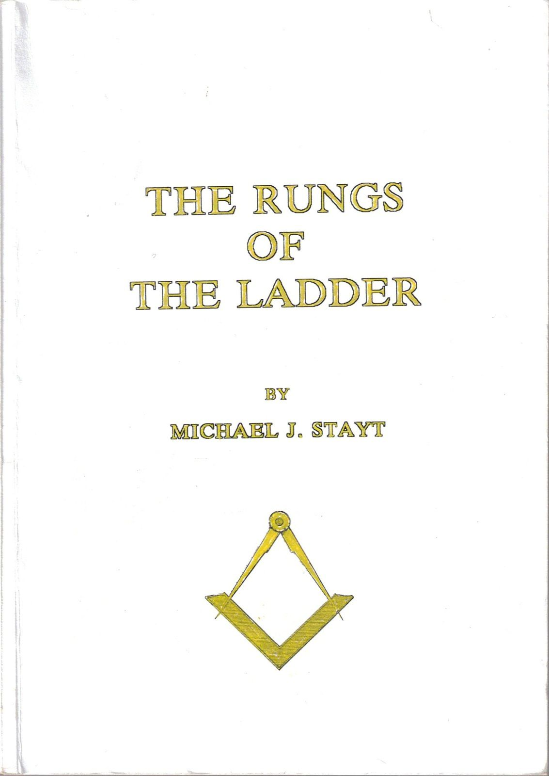 The rungs of the Ladder by Michael J. Stayt