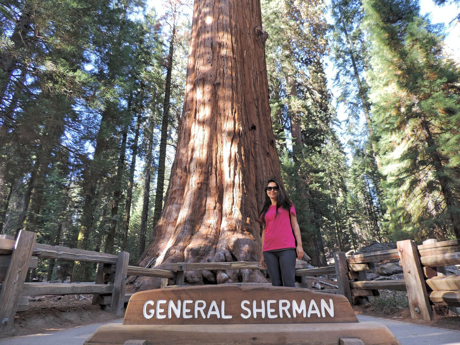 Sequoia National Park - Day 5