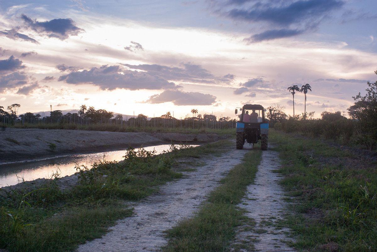 « Nous ne serons plus jamais une terre sèche ». Luttes agroécologiques et travail des Sans Terre du Brésil dans la Révolution bolivarienne