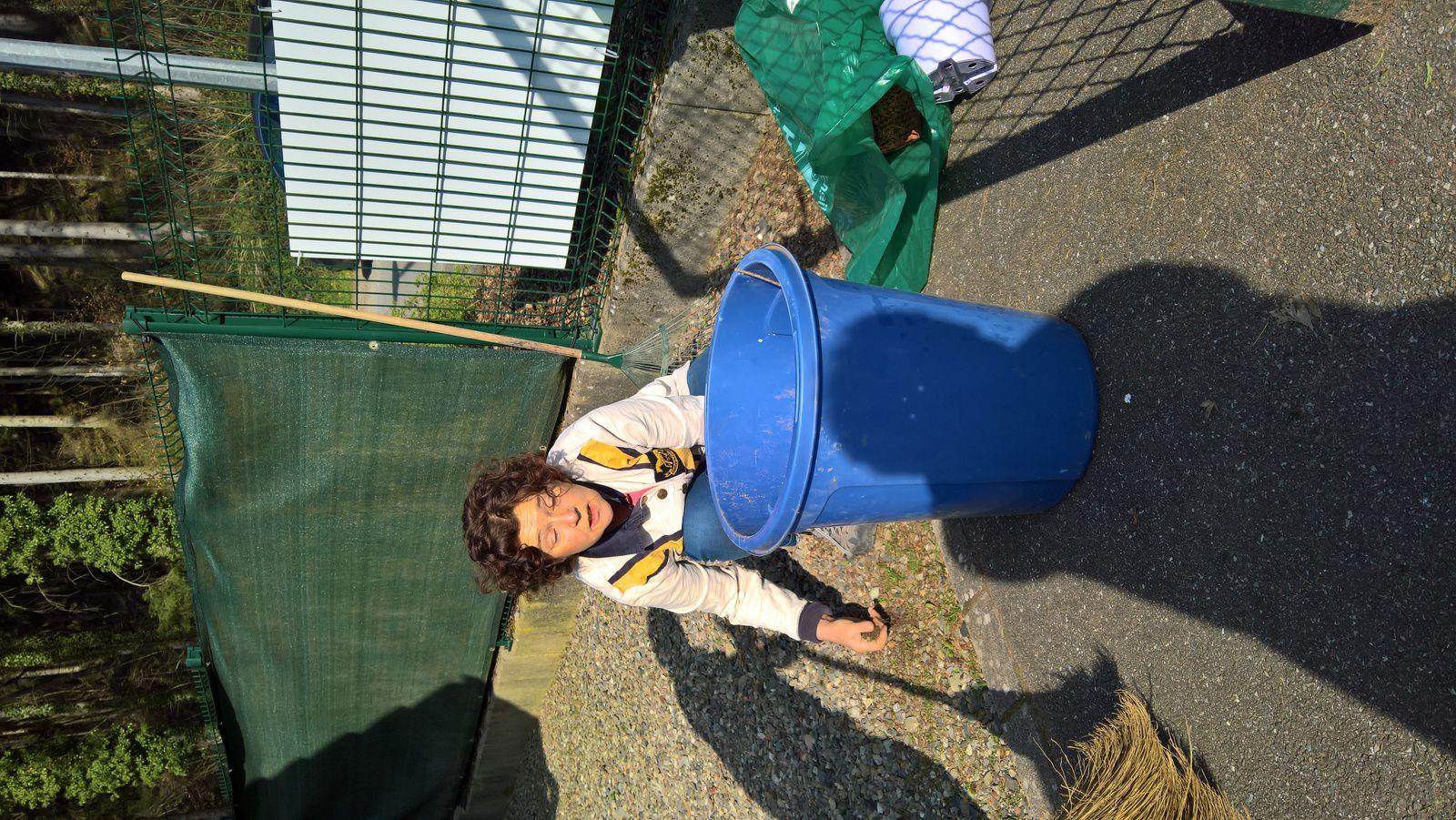 Nettoyage de printemps au TCT !