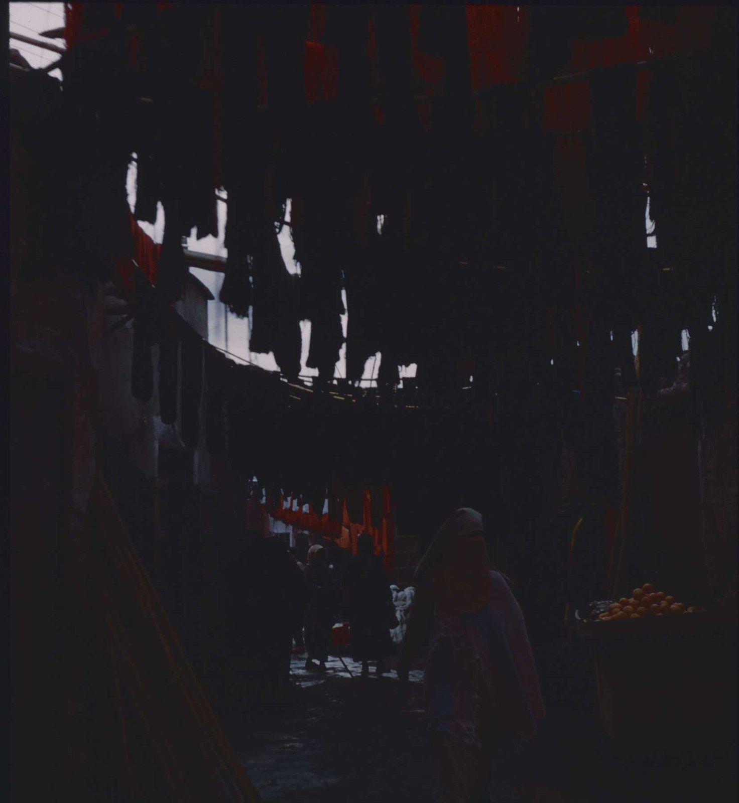 Charmeur de serpents, porteurs d'eau, charrettes,mosquées,les couleurs des tapis ....