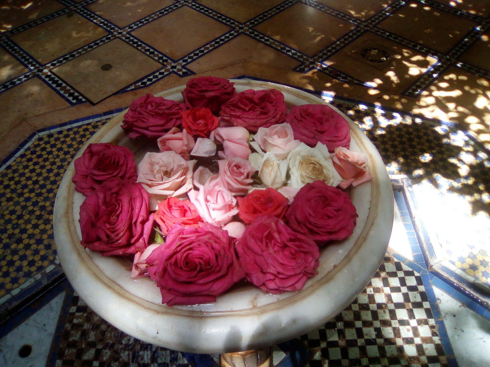 La douceur et la fraîcheur d'un  vrai riad de marocain.Un petit paradis dans cette ville bruyante