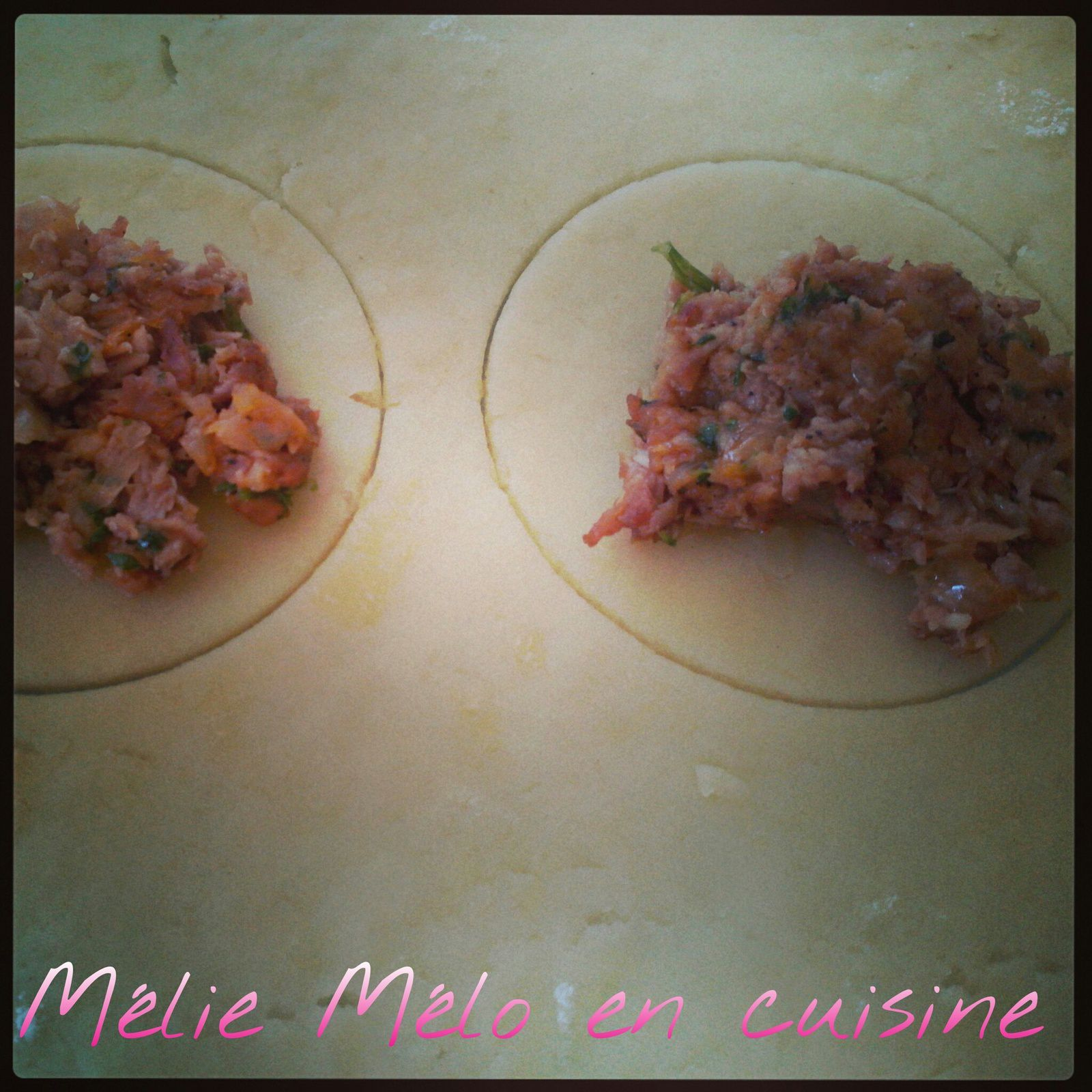 rissoles de viande ou rissois de carne