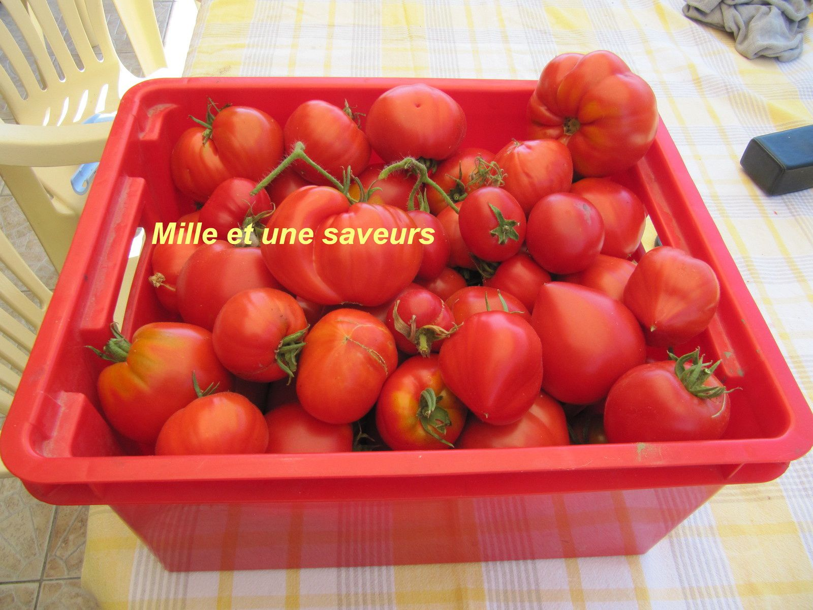 coulis de tomates maison mille et une saveurs dans ma cuisine. Black Bedroom Furniture Sets. Home Design Ideas