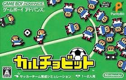 [TEST] Nintendo Pocket Football Club / 3DS