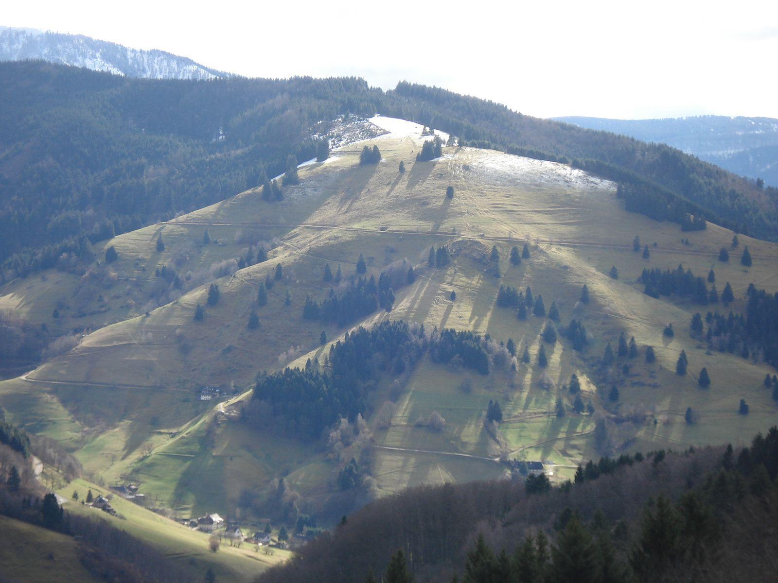C'était le 23 février, randonnée en Forêt-Noire