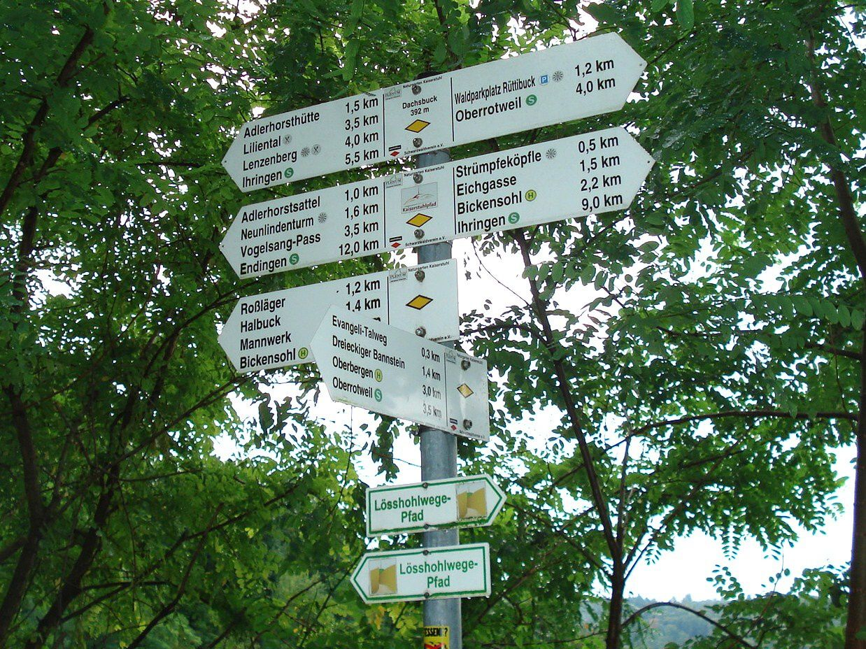 Mercredi 10 septembre - Randonnée au Kaiserstuhl