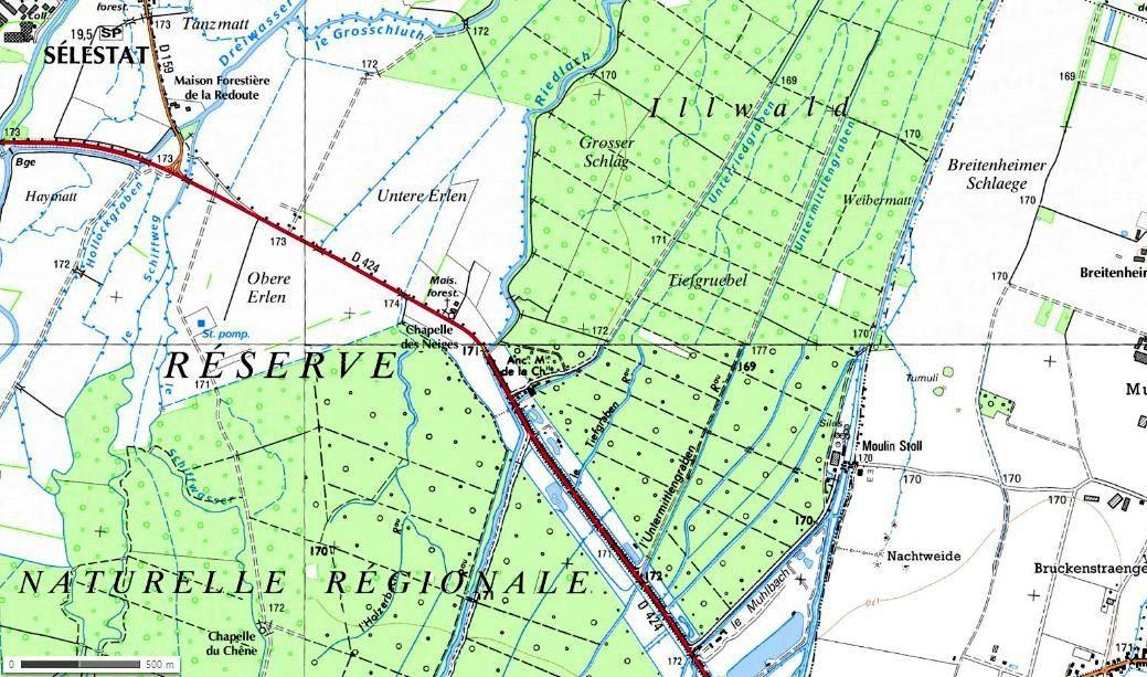Mercredi 22 octobre - Dans l'Illwald et le Ried, avec les séniors