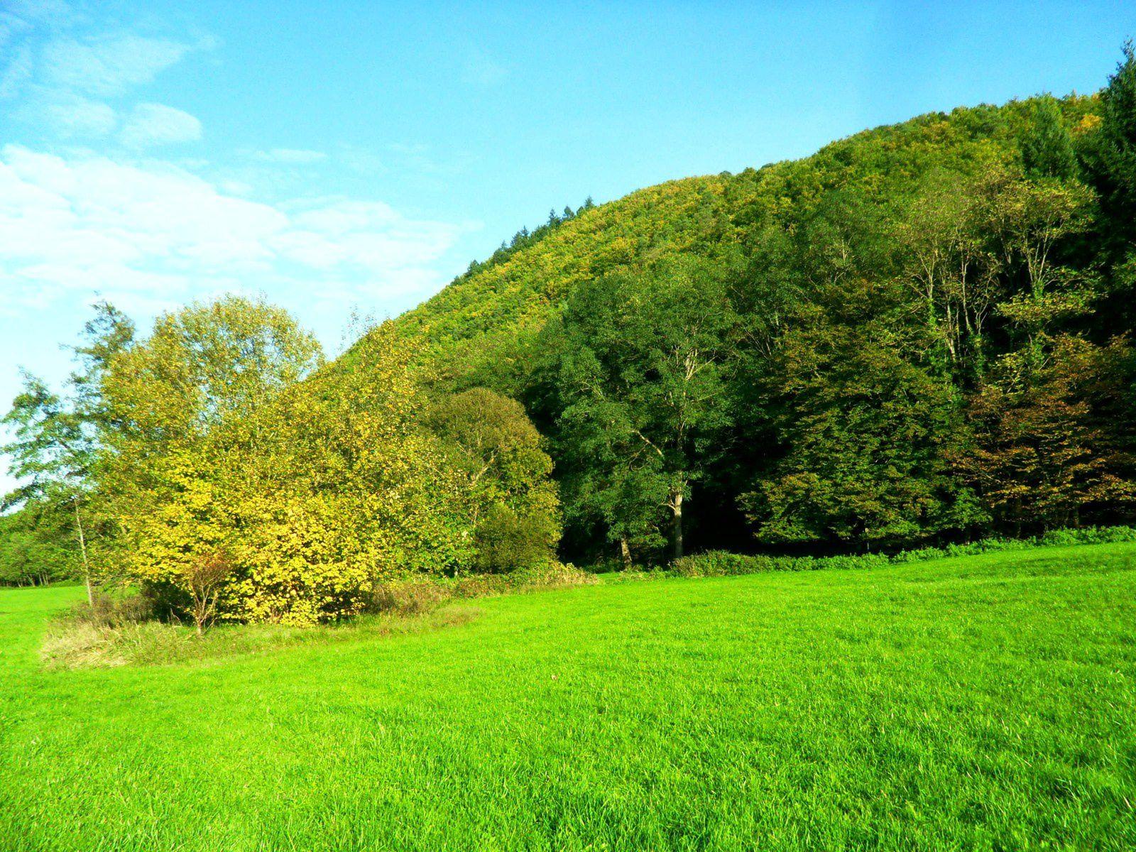 Mercredi 12 novembre - Randonnée entre Saint-Gilles et les Trois Châteaux d'Eguisheim