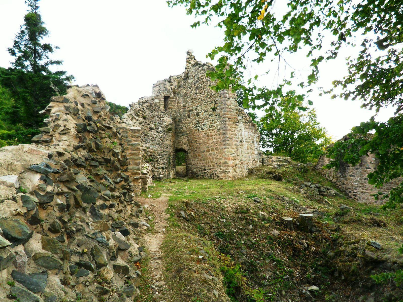 Mercredi 23 septembre - Randonnée de Soultzbach-les-Bains au Stauffen