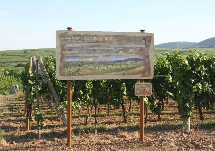 Mercredi 28 octobre - Le sentier viticole d'Eguisheim, avec les séniors