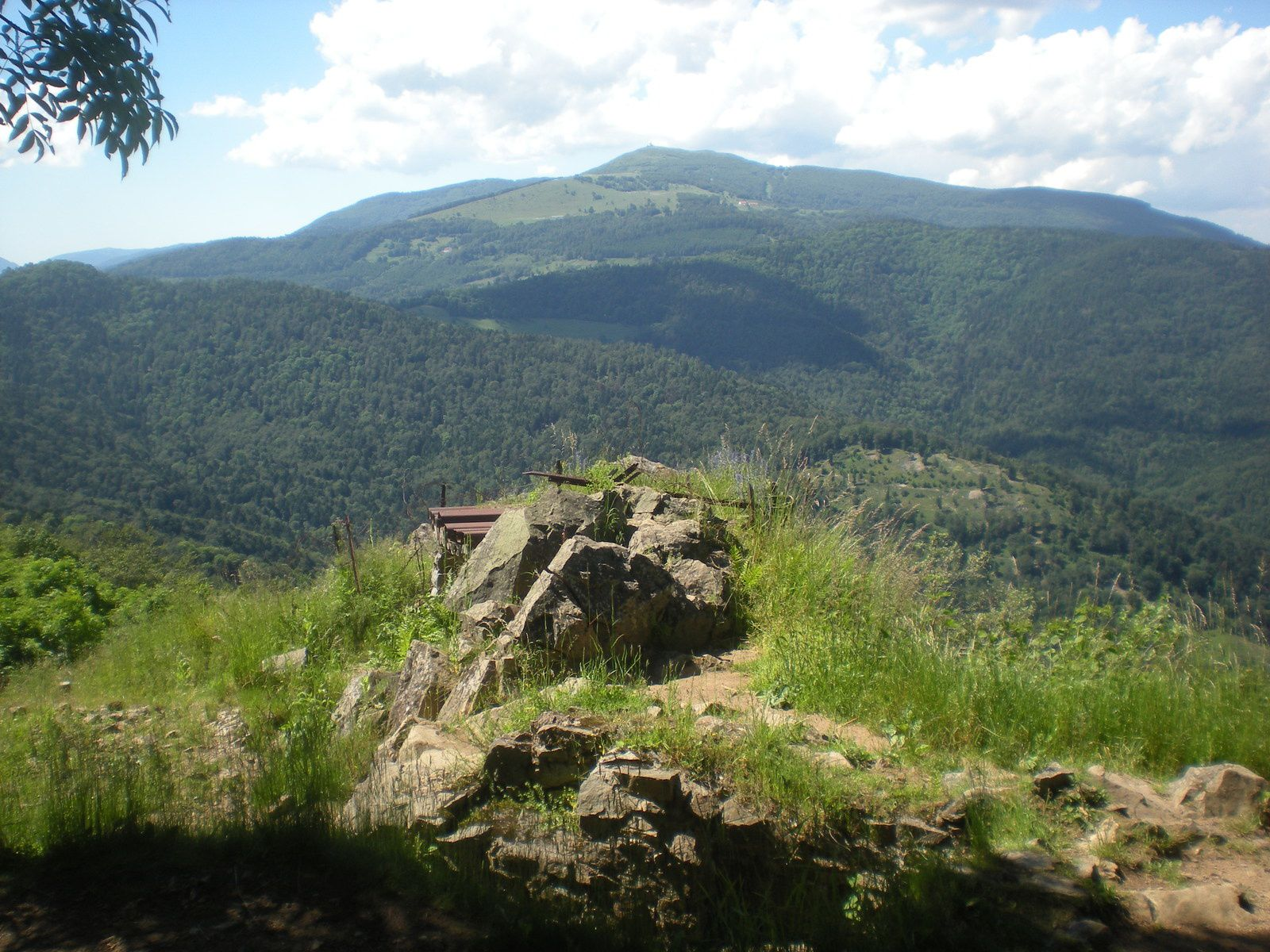 Mercredi 20 juillet - Randonnée au Hartmannswillerkopf