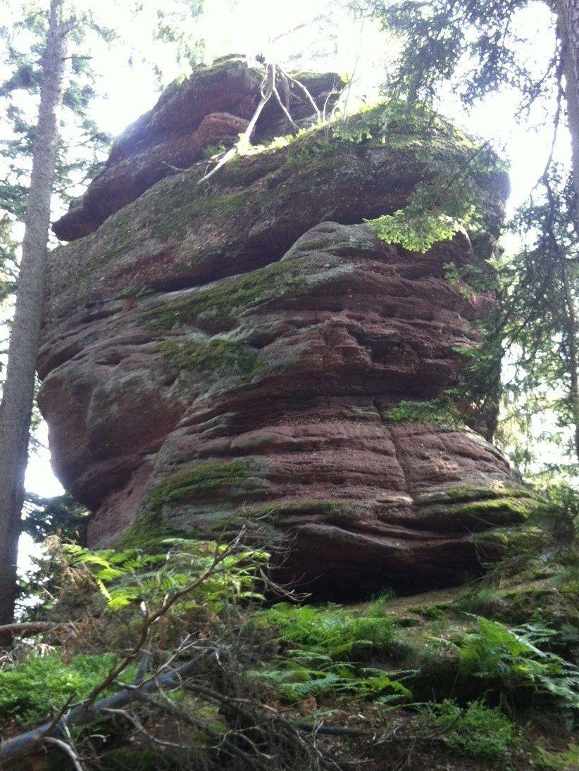 Mercredi 3 août - Randonnée à Breitenau dans le Val de Villé