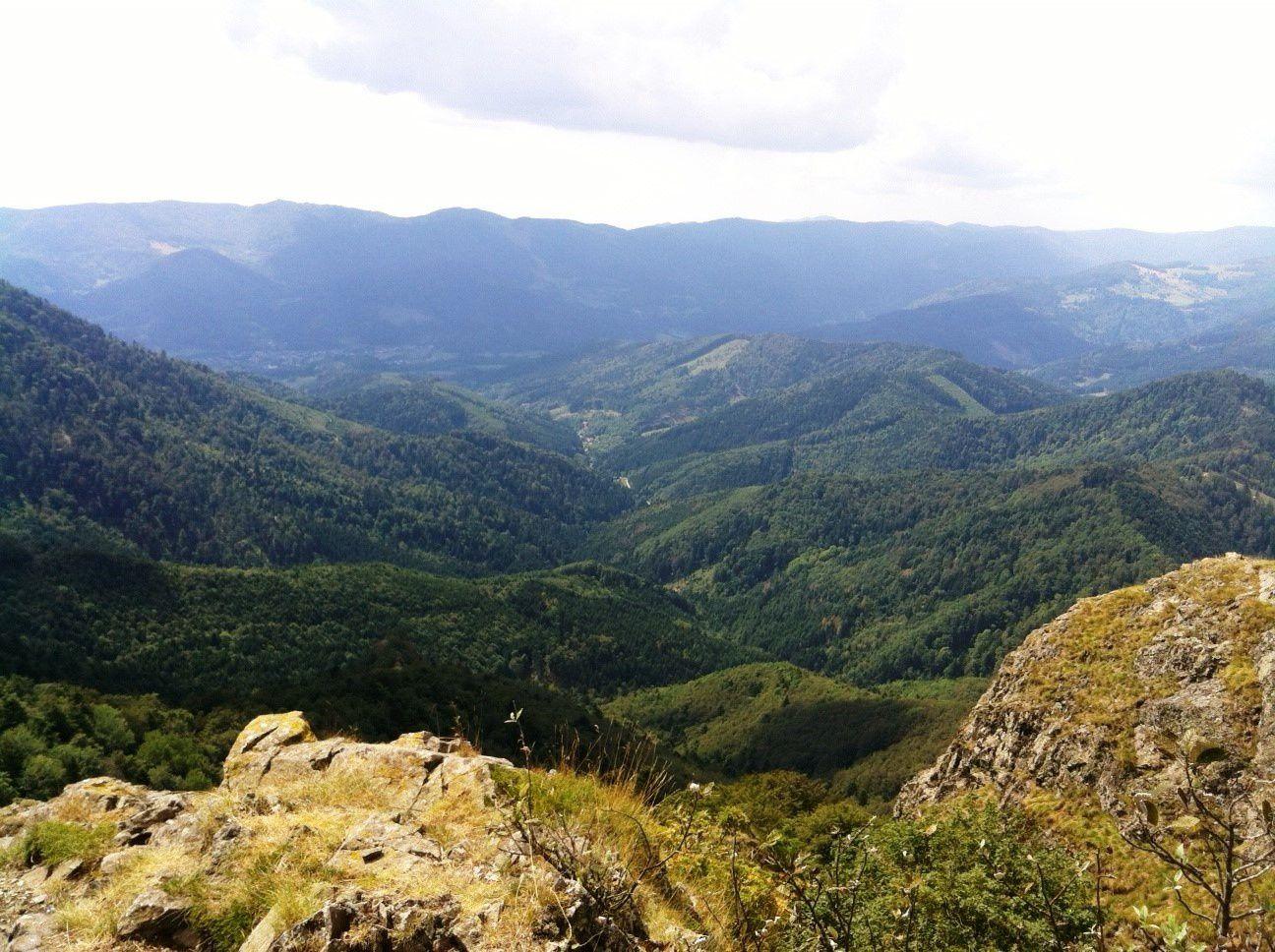 Mercredi 31 août - Randonnée dans le massif du Rossberg