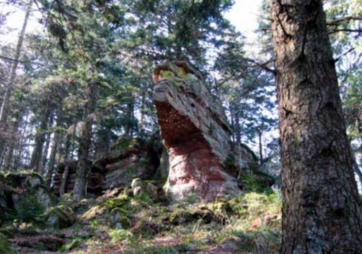Mercredi 10 mai - Randonnée dans le massif du Taennchel