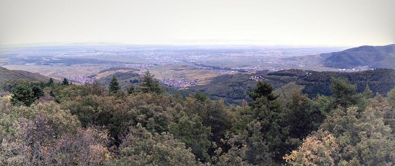 La plaine d'Alsace, vue du massif des Trois-Épis (cliquer pour agrandir)