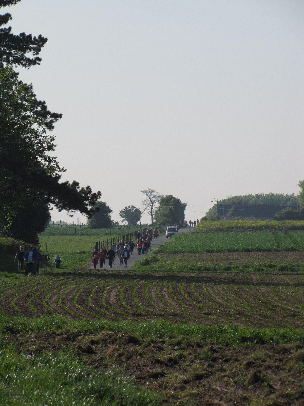 Photos route des Archers 2014 Jérôme série marche 1