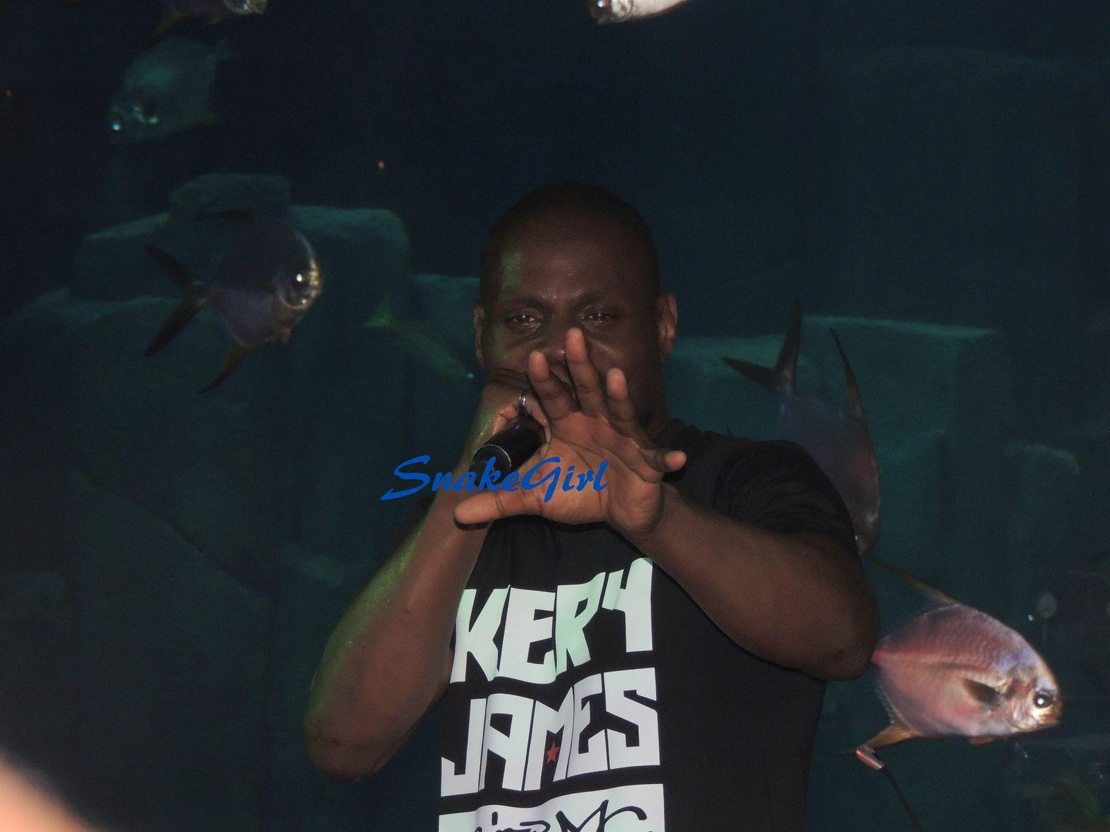 Concert VIP KERRY JAMES