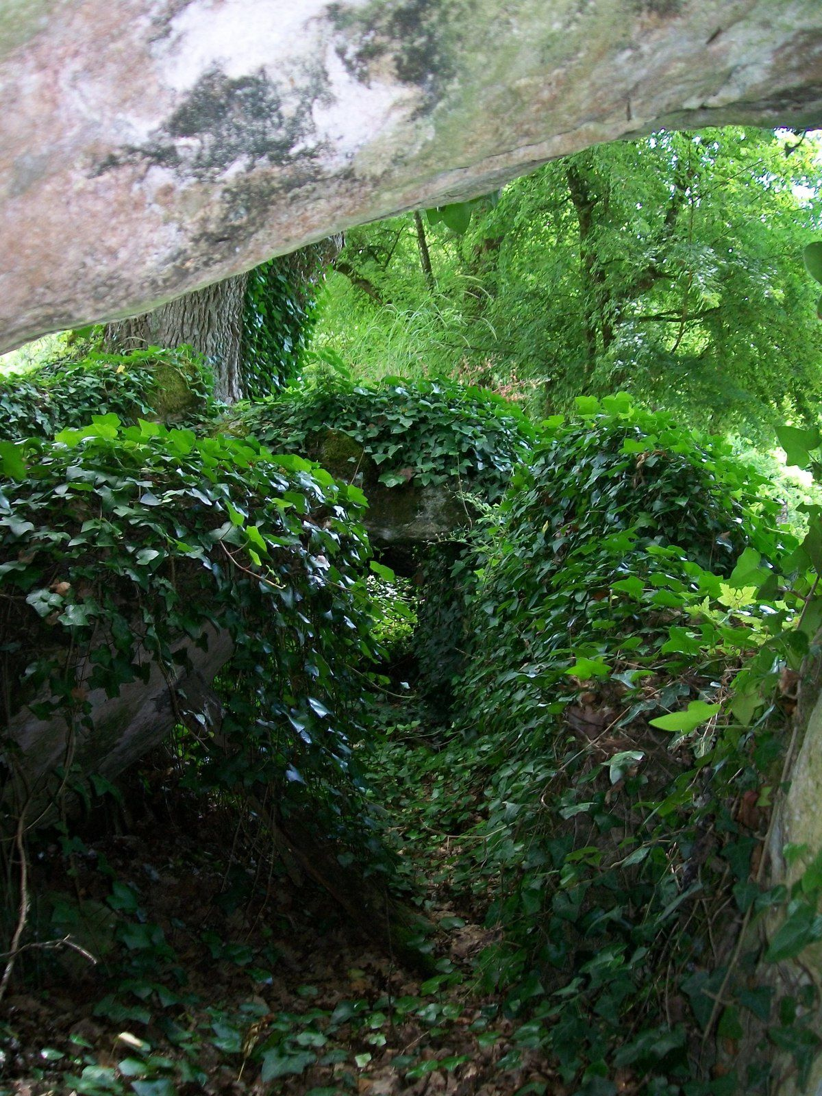 Mégalithes de l'Entre-deux-Mers 26 juin 2016 avec Aquitaine historique