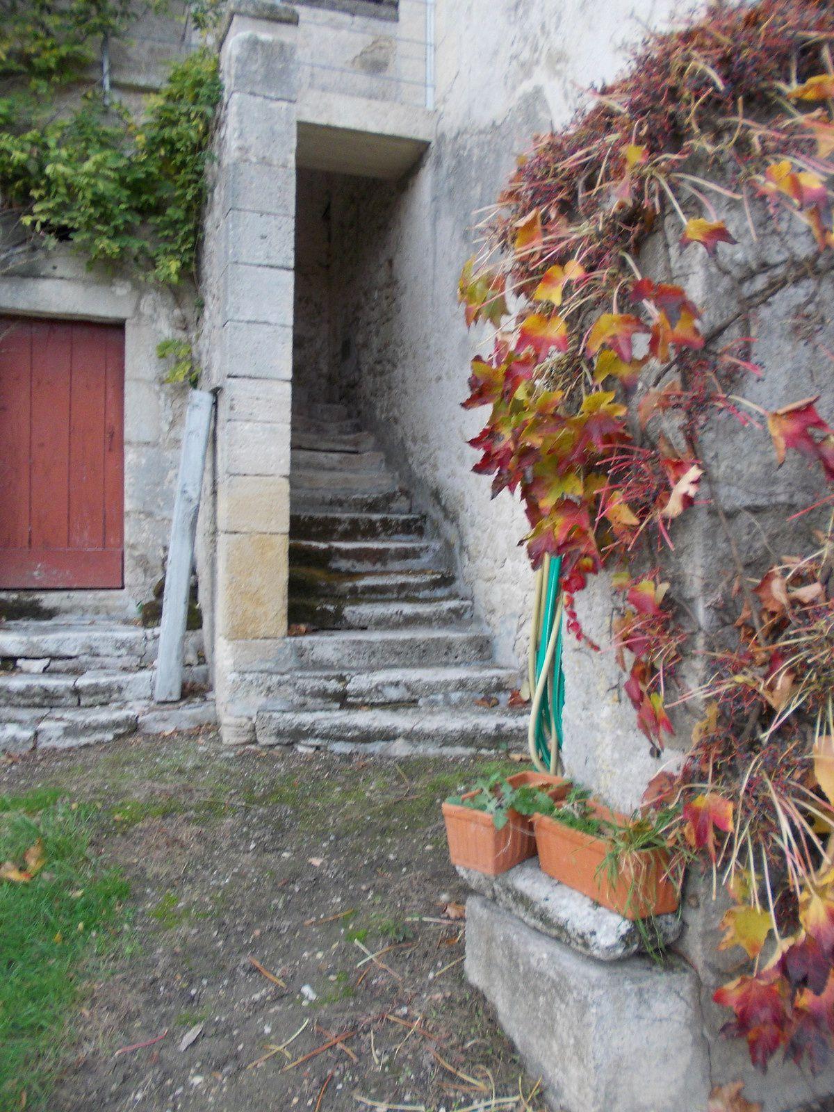 la cour arrière & ses pavillons et escaliers