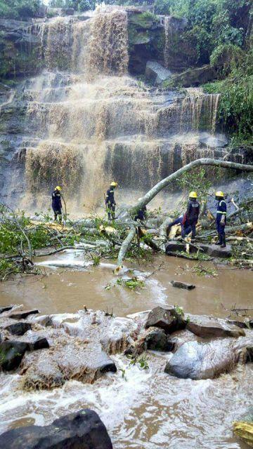 Tragedia en Ghana: 18 personas que se bañaban en unas cataratas mueren tras caerles un árbol encima (Vídeo).