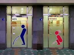 TOILETS OR NOT TOILETS