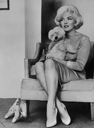 &quot&#x3B;I LOVE MY DOG&quot&#x3B; MARILYN MONROE &amp&#x3B; MAF